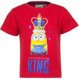 Maglia Angry Birds