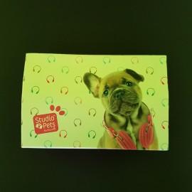 Scrigno Bijoux Studio Pets...